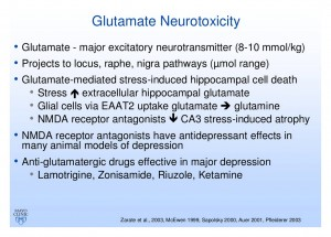 Glutamate Neurotoxicity and Depression